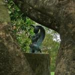 A Sculpture in the Garden