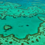 Hamilton - GBR 2 - Heart reef